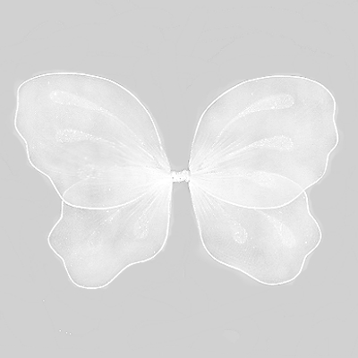 White-Wedding-Angel-Wings