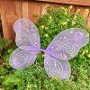 Purple Fairy Wings